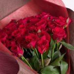 赤いバラ「真紅」ってどんな品種!?値段は!?