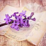 ヒヤシンスの花言葉の由来や色別の意味とは!?