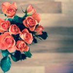 贈るなら100本のバラを!気になる実際の大きさやお値段は!?